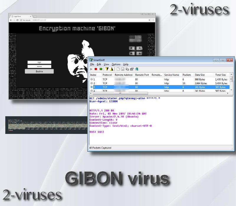 GIBON Virus